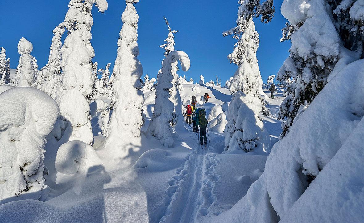 8 причини да правите зимни походи